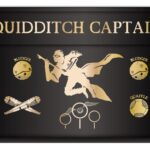 portatodo quidditch