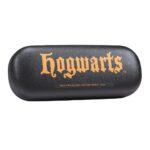 gafas hogwarts 2